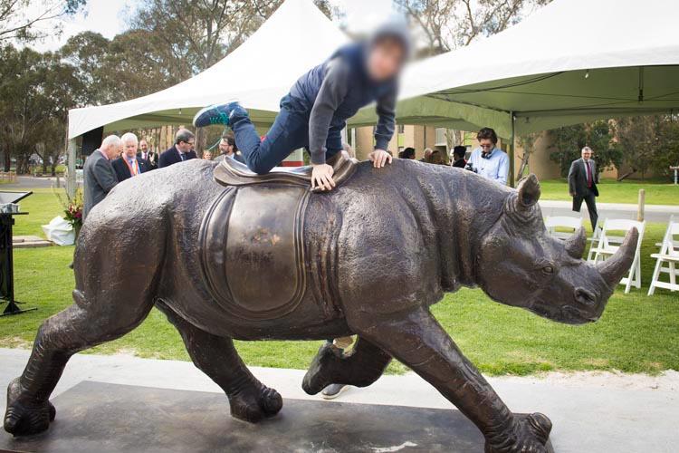 Bull sculpture statue