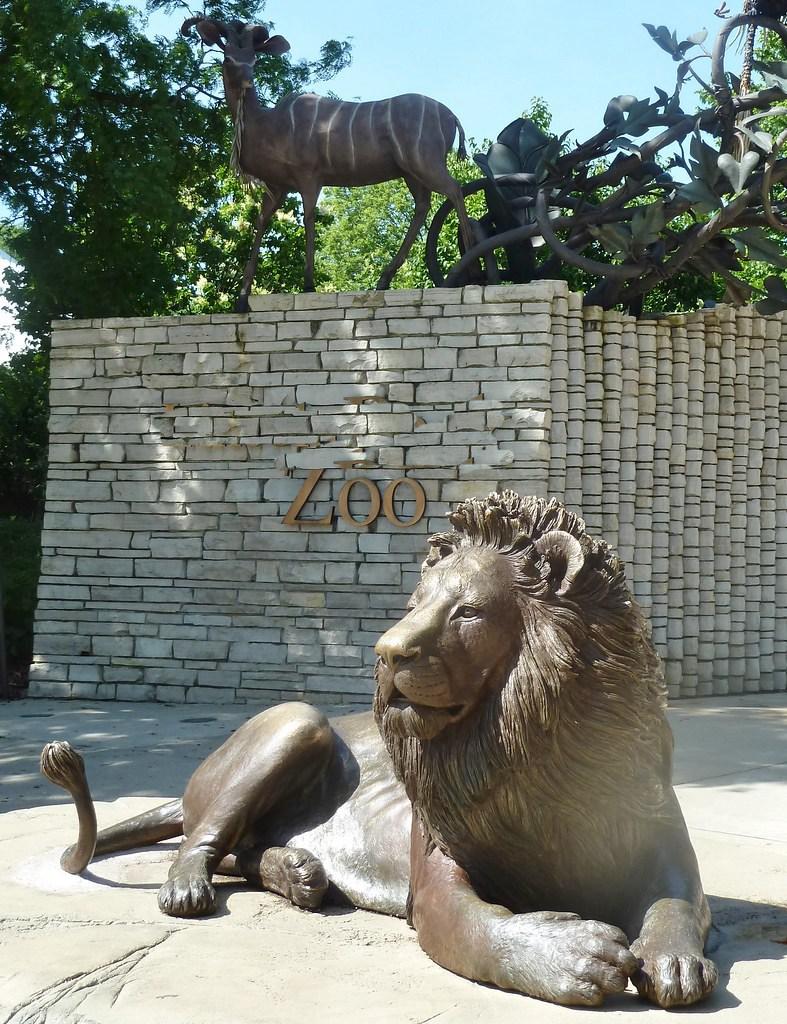 zoo lion statue