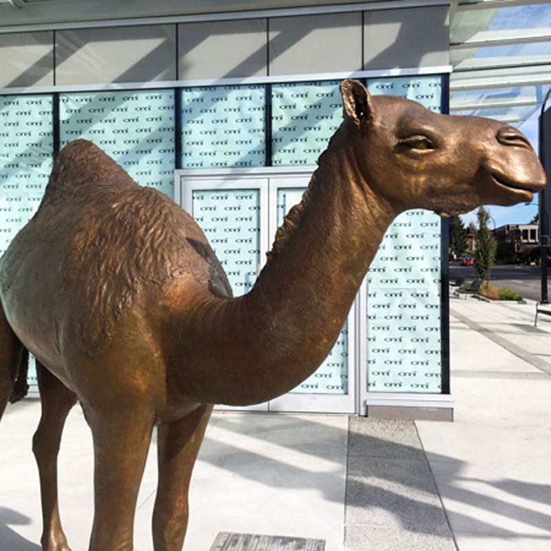 art camel sculpture