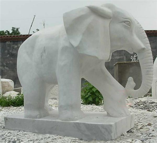 giant elephant