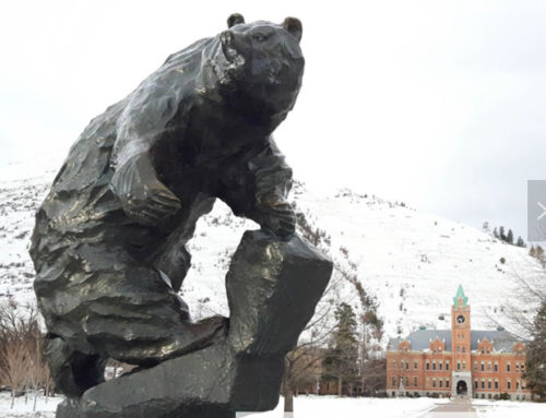 Bear copper statue