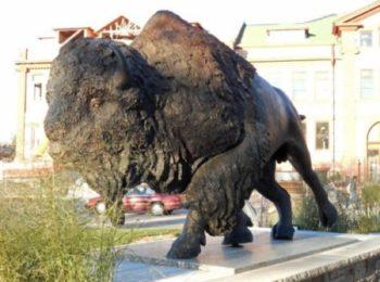 buffalo sculpture for sale