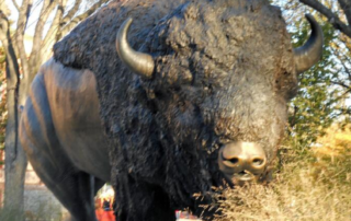 buffalo sculpture images
