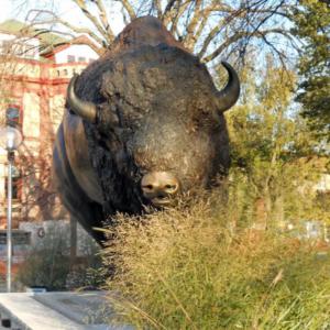 buffalo sculpture park