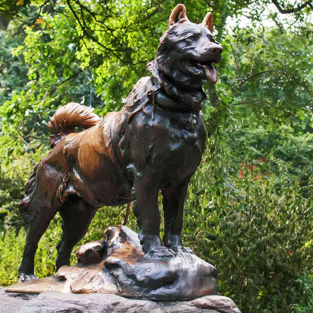 bronzee dog statue for the garden