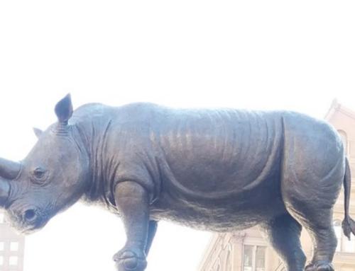 Large Outdoor Bronze Animal Statue of Northern White Rhino