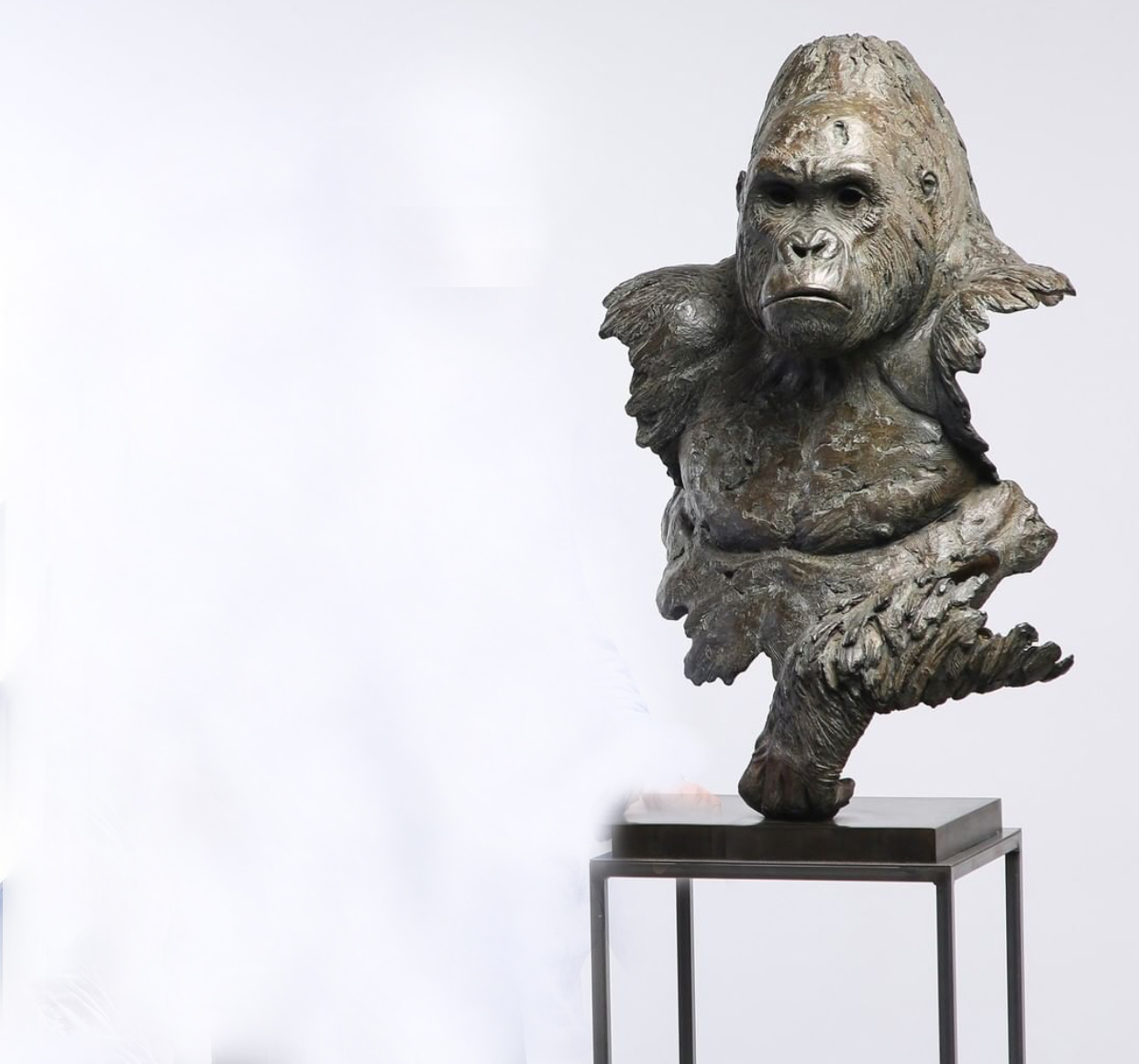 The Alpha Gorilla Bronze Animal Head By Pj Chabert