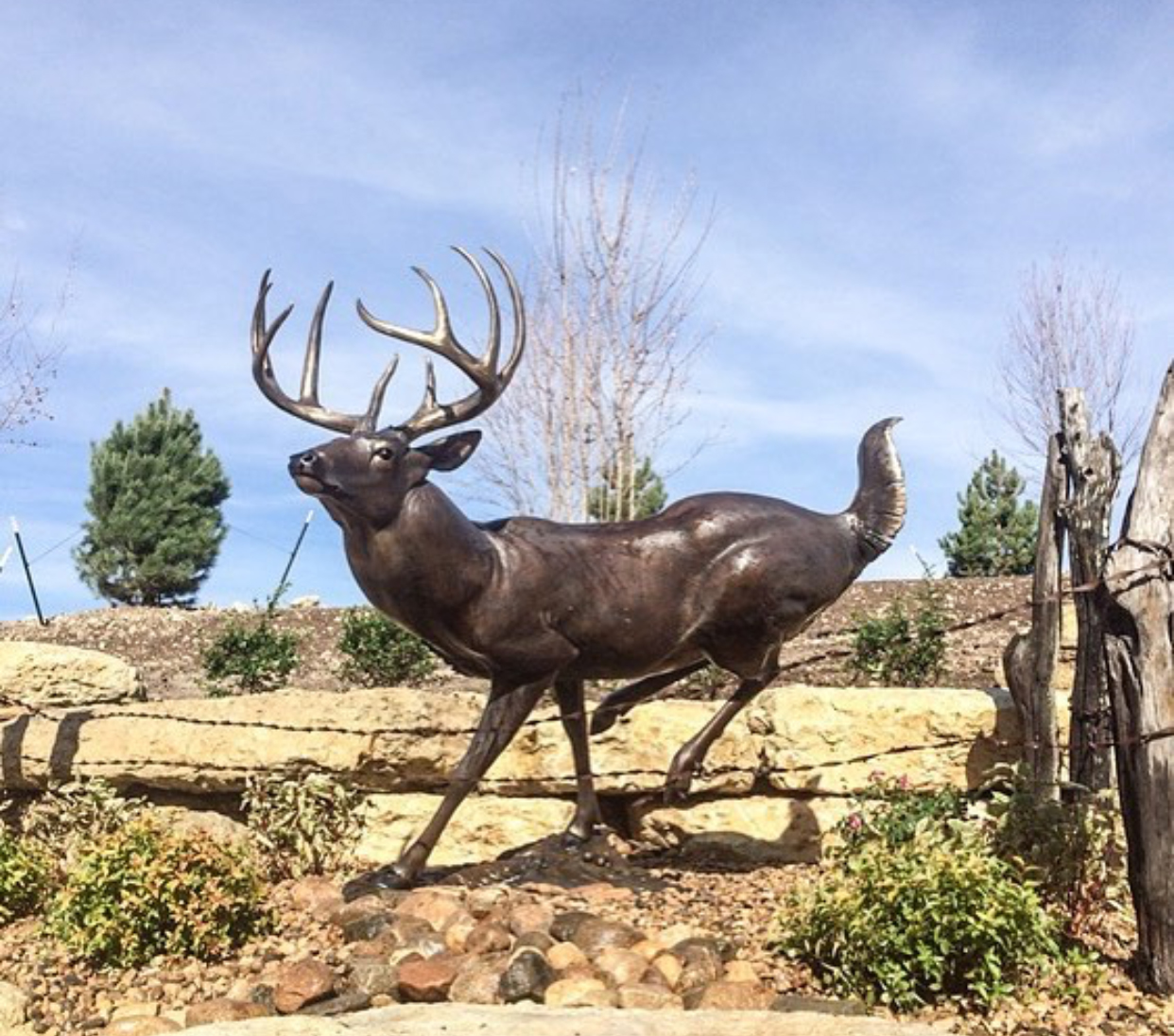 High Tailin whitetail deer Bronze Sculpture by John Parsons