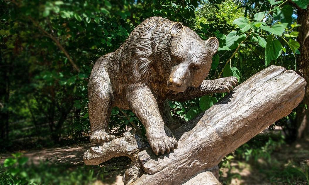 Bear of carnivorous animals statue