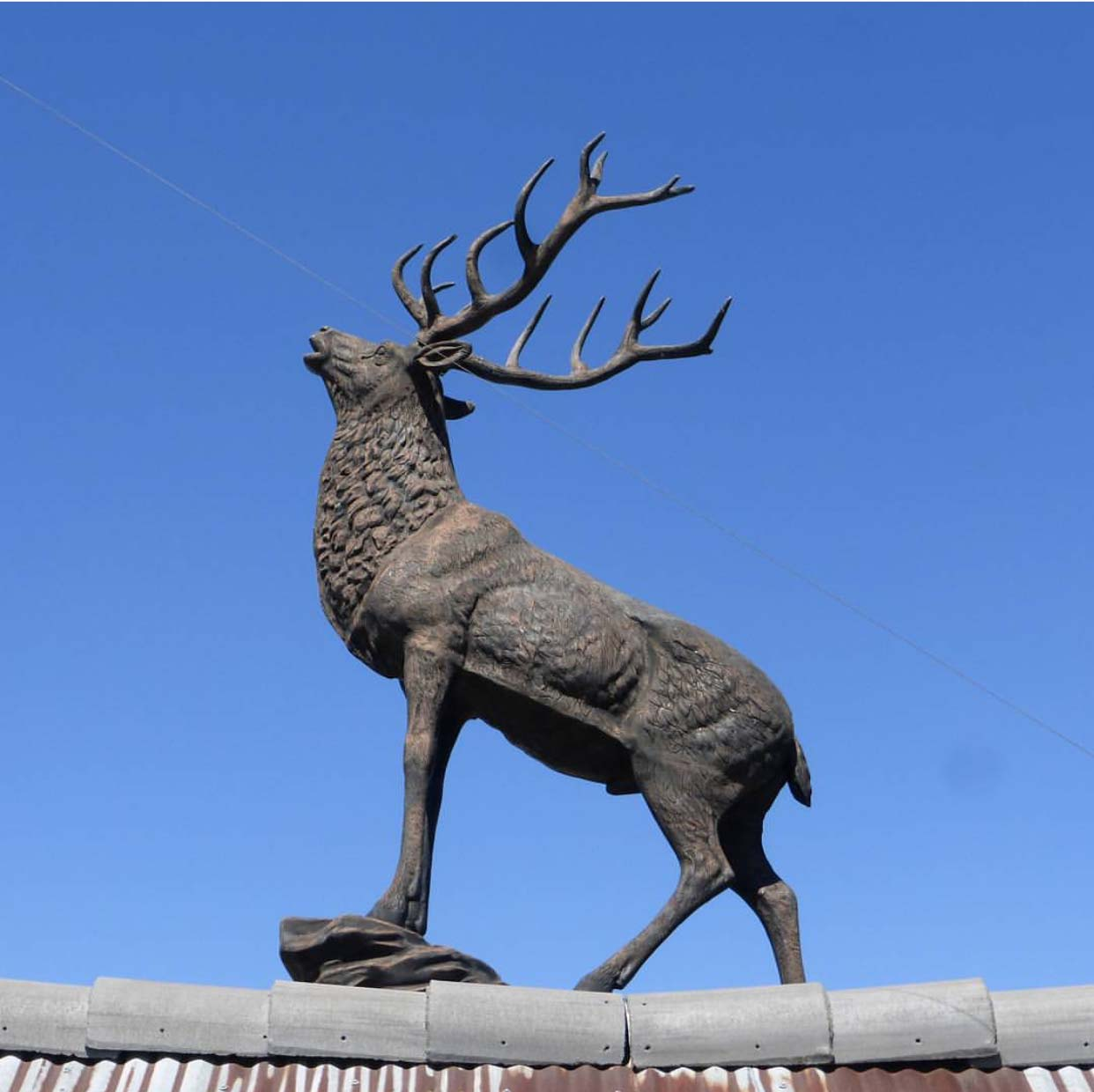 Contemporary patina vivid customized deer sculpture for outdoor decoration