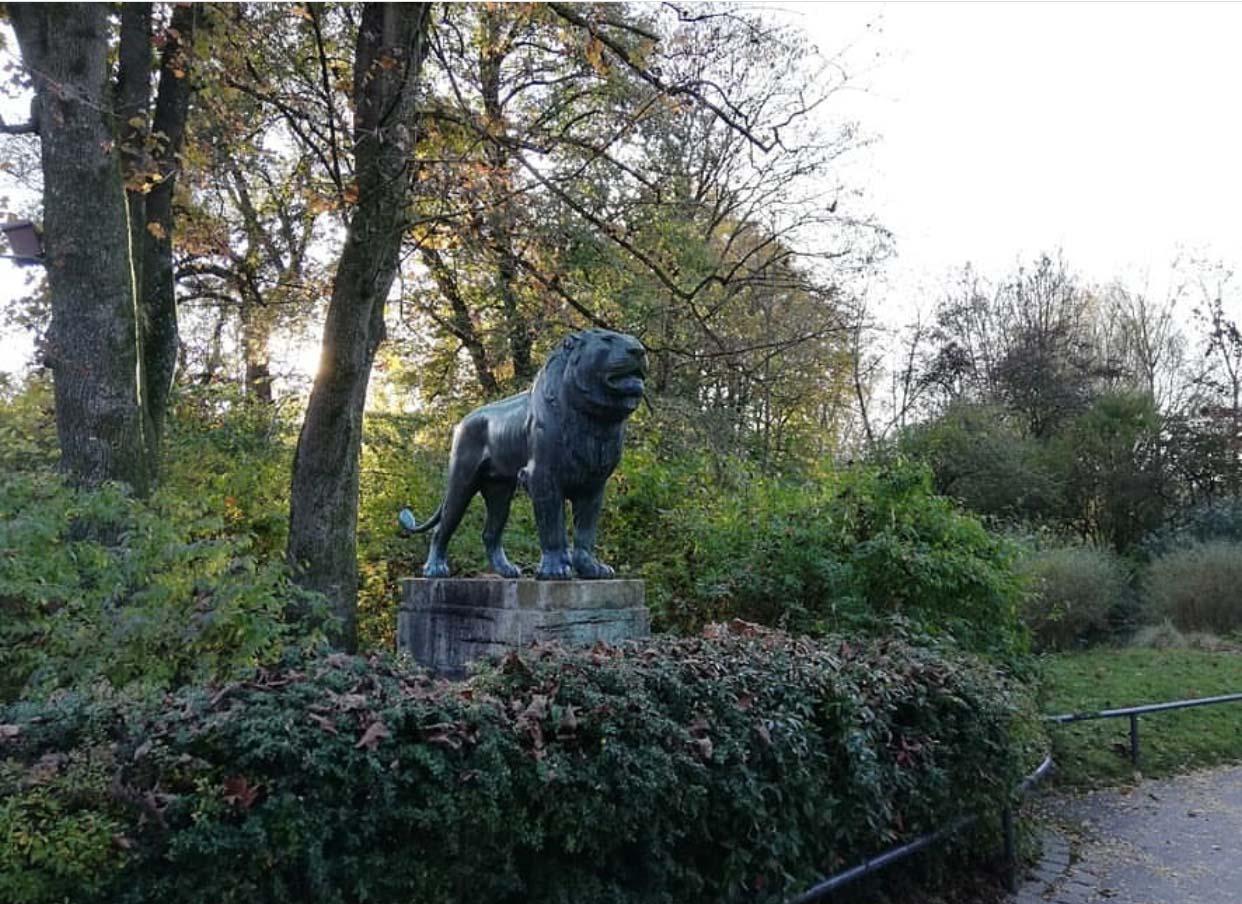 Art shop good sale contemporary style bronze lion sculpture for garden