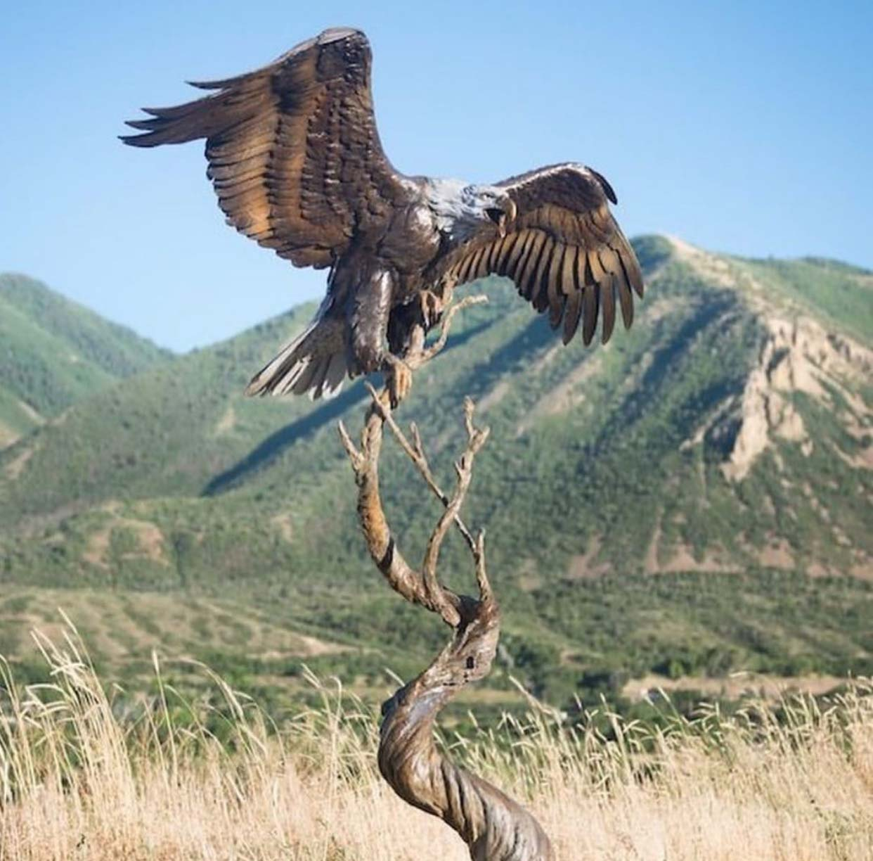 Art shop top sale modern style bronze eagle sculpture for outdoor decoration