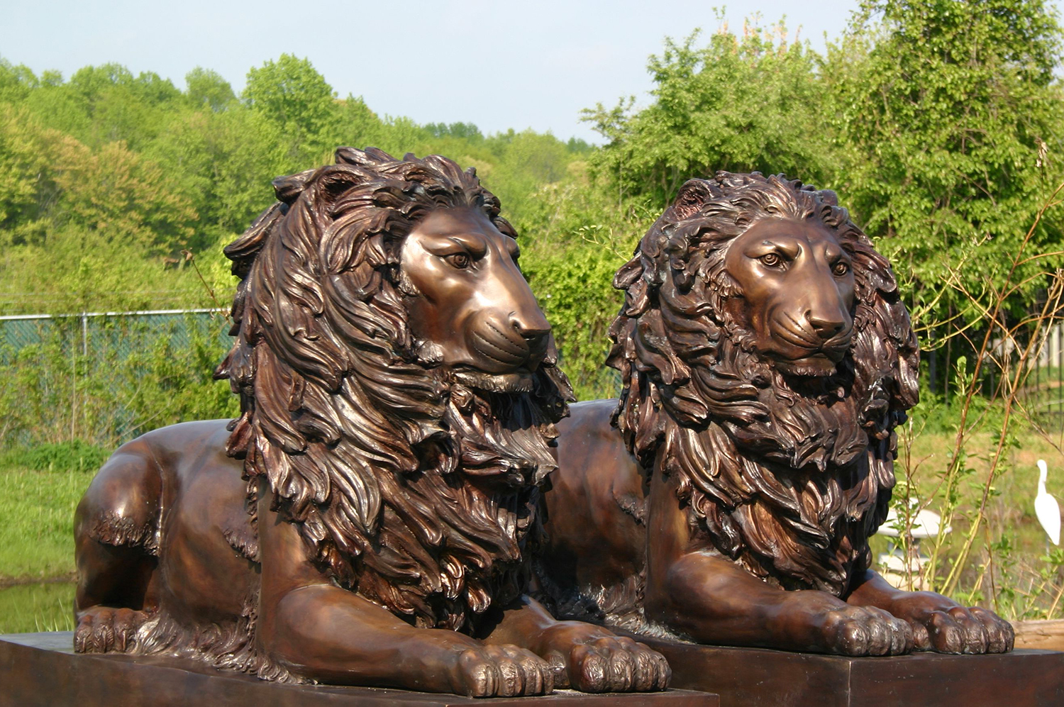 Hand Crafted Life Size Bronze Lions Sculpture