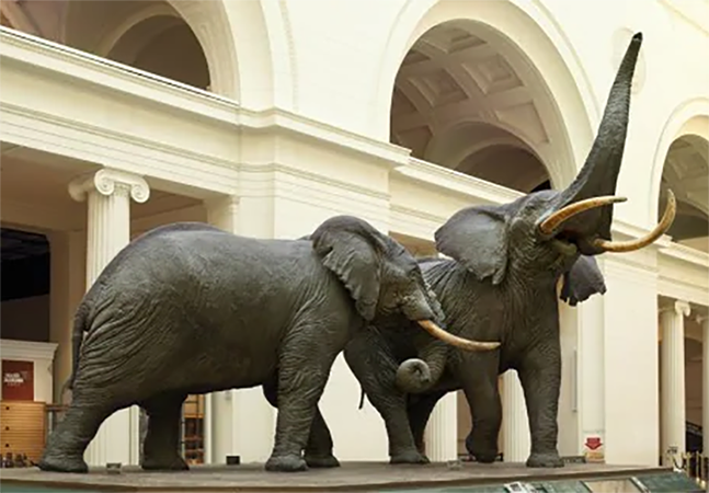 Large floor Bronze elephant statues for outdoor Ornament