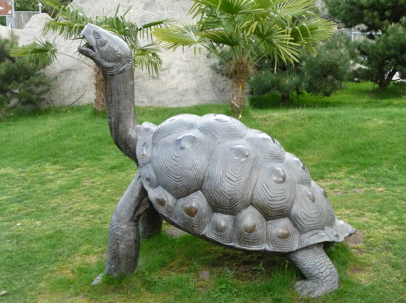 Large Life Size Bronze Outdoor Garden Turtle Sculpture