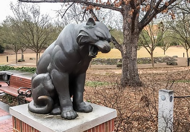 Opened Big Mouth Bronze Outdoor Decoration Life Size Puma Con Color Statue