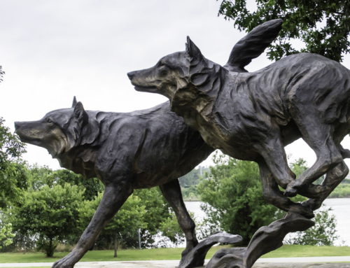 Vivid Running bronze black wolf sculpture