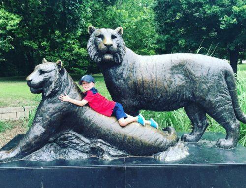 Garden life size bronze Bengal tiger sculptures