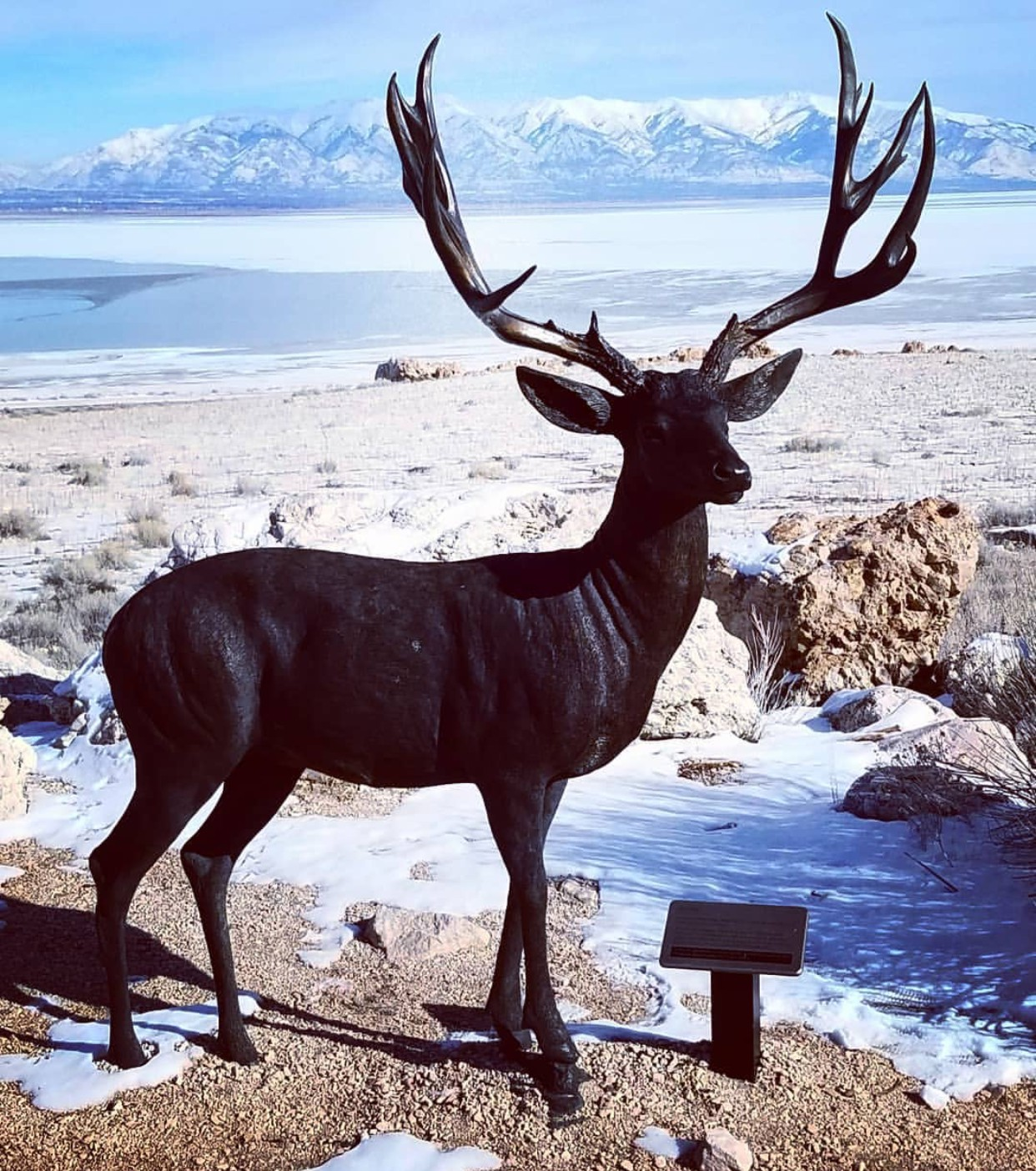 Life size stag statue for decor