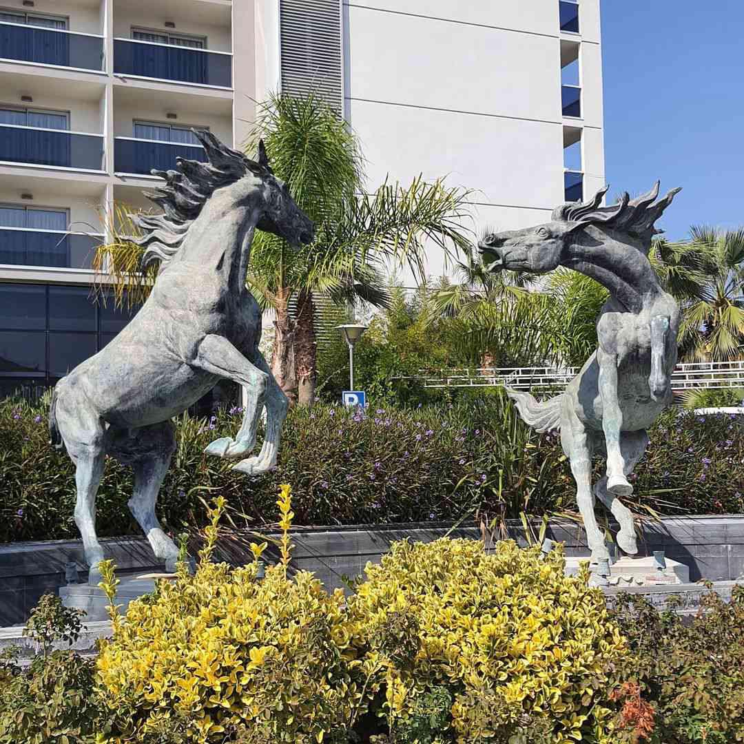 Arabian pure breed horse