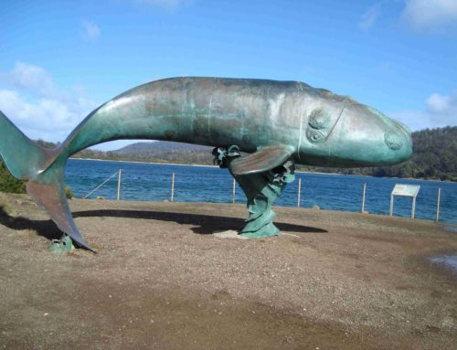 Large Outdoor Life Size Blue Whale Sculpture