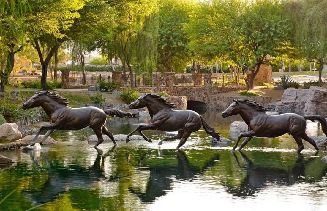 Arabian working equitation