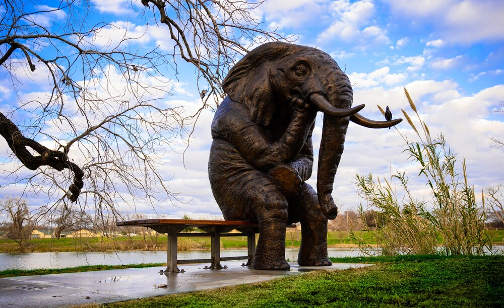 Wise Asian elephant sculpture