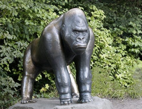Large Life Size Bronze Unhappy Gorilla Outdoor Sculpture