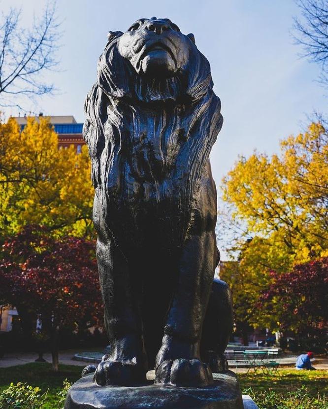 lion garden statues for sale