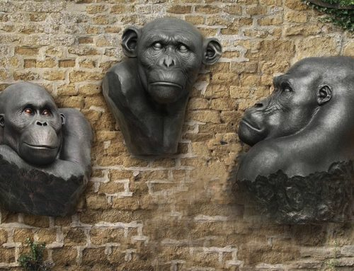Bronze Gorilla Wall Art Sculpture
