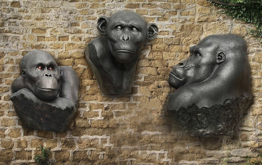 Gorilla Wall Art