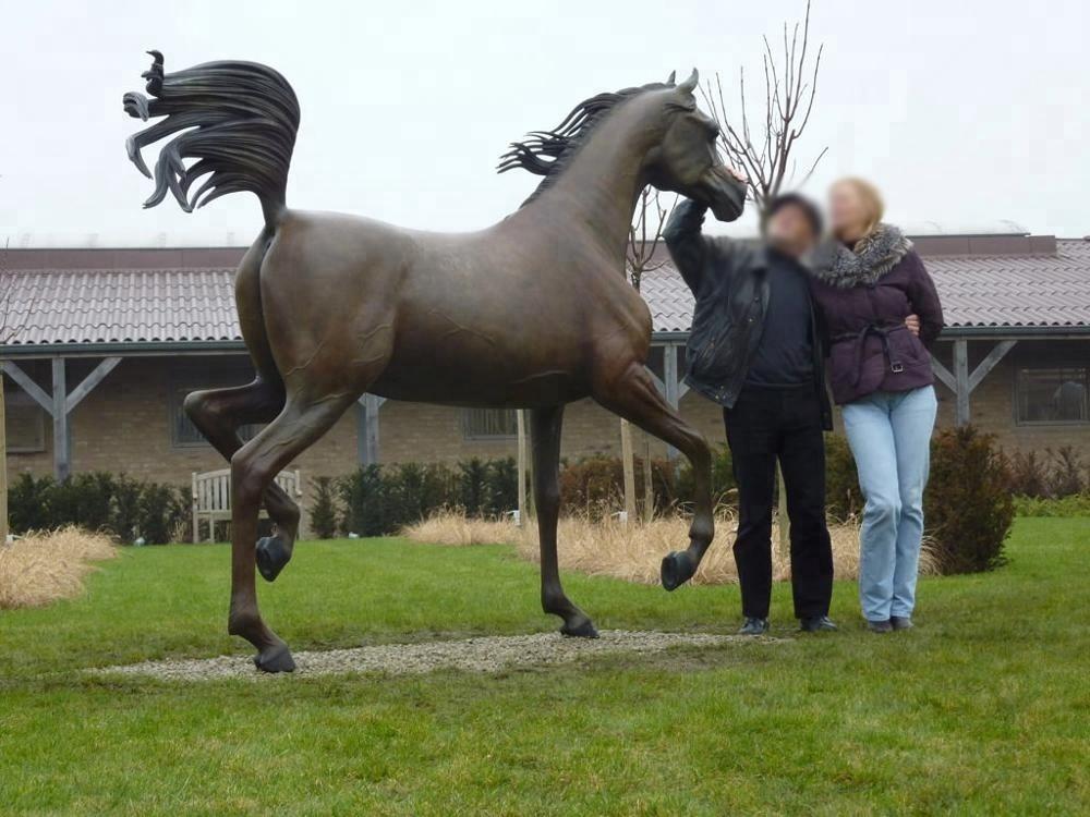 arabian horse custom