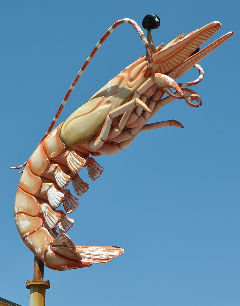 Art shop hot selling reasonable price fiberglass mantis shrimp sculpture