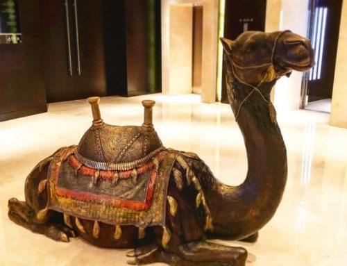 Indoor Sitting Bronze Decoration Large Camel Statue