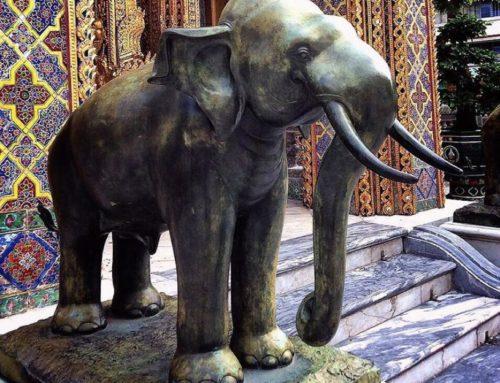 Bronze Large Life Size Elephant Statue