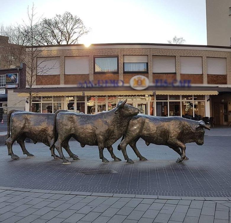 cow sculptures